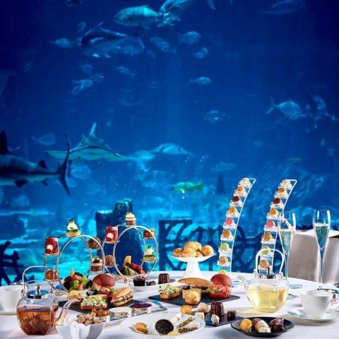 ristorante subacqueo dubai - Investire a Dubai